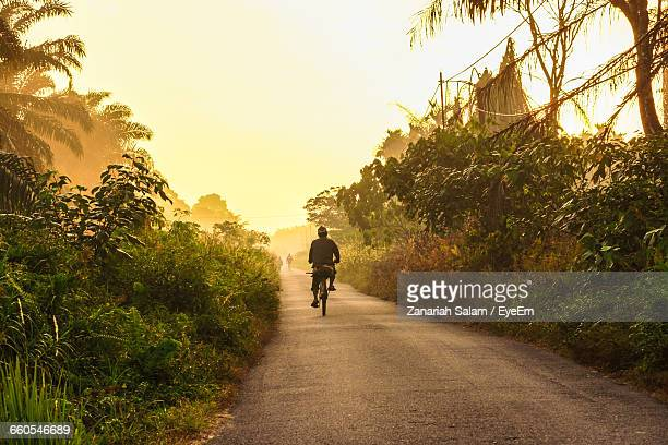 Bicycling On Narrow Road Along Plants