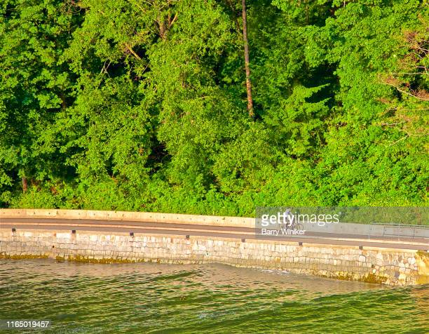 bicyclist near seawall, vancouver, british columbia - seawall stock pictures, royalty-free photos & images