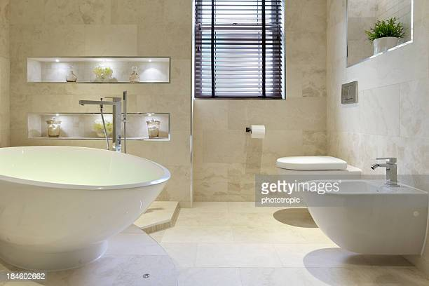 bidet, bath and toilet