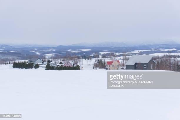 Biei in winter, Hokkaido, Japan