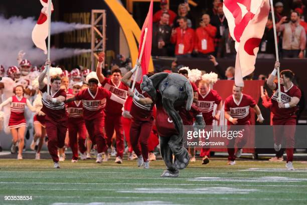Big Al and the cheerleaders lead the Crimson Tide onto the field for the College Football Playoff National Championship Game between the Alabama...
