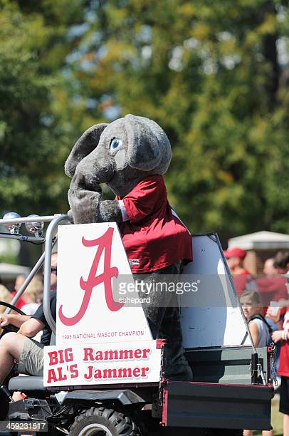 big al in university of alabama homecoming parade - tuscaloosa stock pictures, royalty-free photos & images