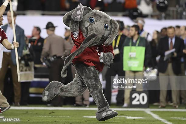 Big Al the Alabama Crimson Tide mascot leads the team onto the field before the 2017 College Football National Championship Game between the Clemson...