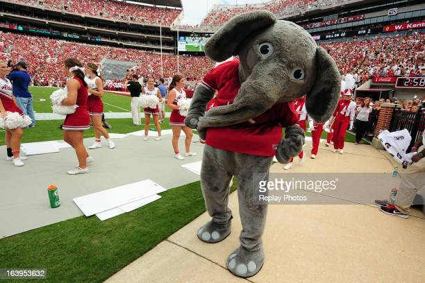 Big Al the mascot of the Alabama Crimson Tide performs during a game against the Western Kentucky Hilltoppers at BryantDenny Stadium on September 8...
