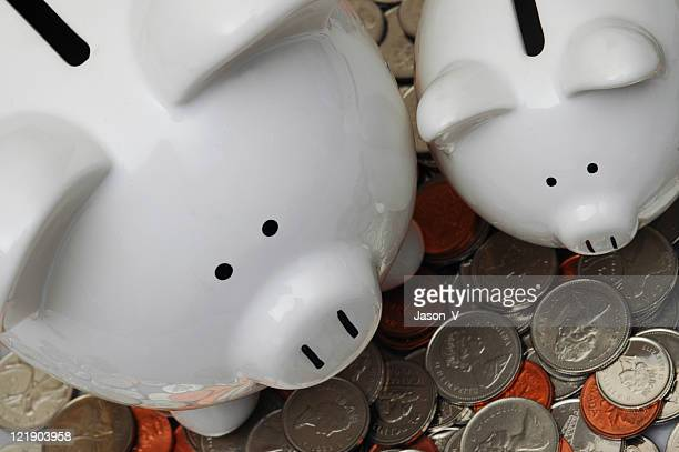 Big and Little Piggy Banks