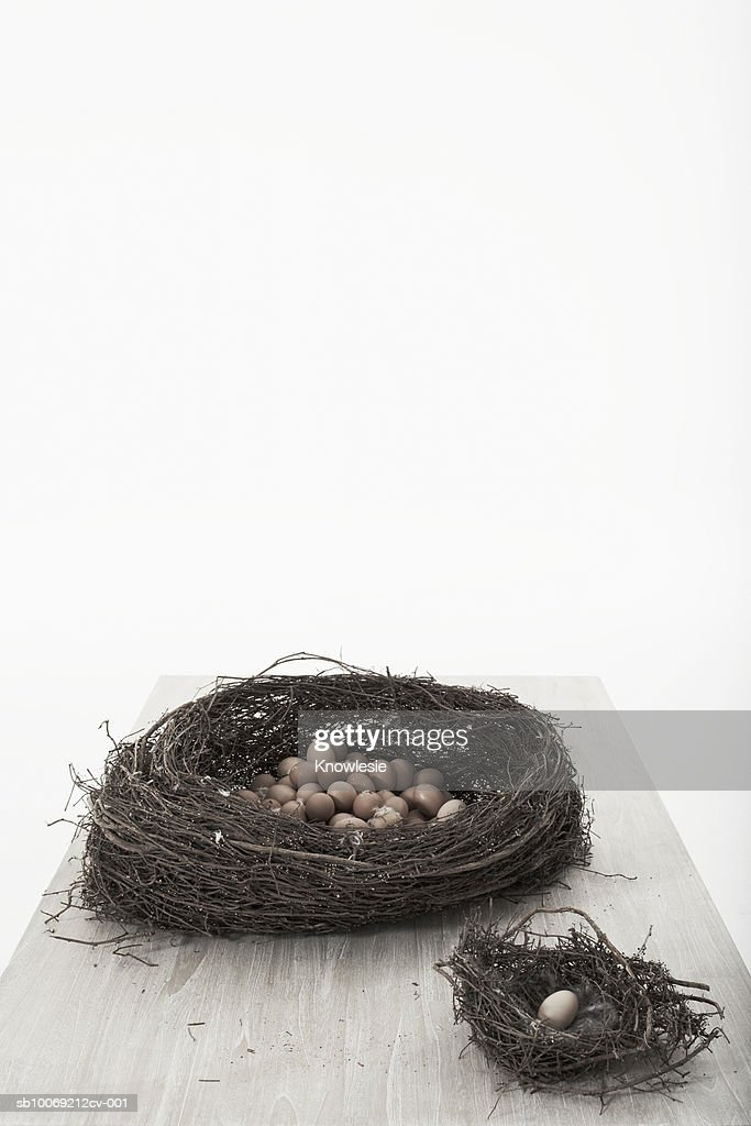 Big and small nest with eggs, studio shot : Stockfoto