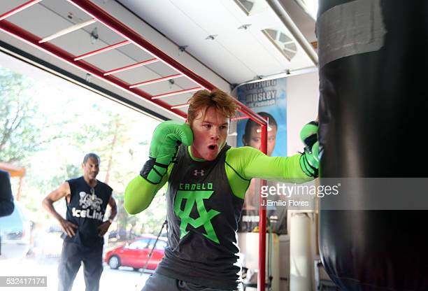 Big Bear CA 080113 Mexican Boxer Saul ' Canelo' Alvarez trains for his fight against Floyd Mayweather Jr on September 14 2013 in Las Vegas Photo by J...