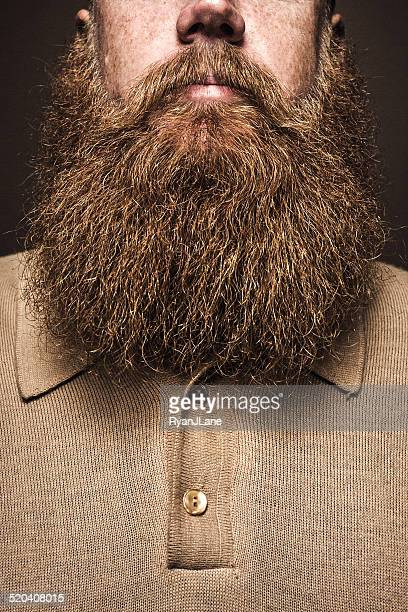 big bearded man portrait - beard stock pictures, royalty-free photos & images