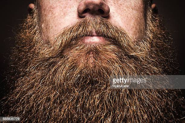 Big Bearded Man Portrait