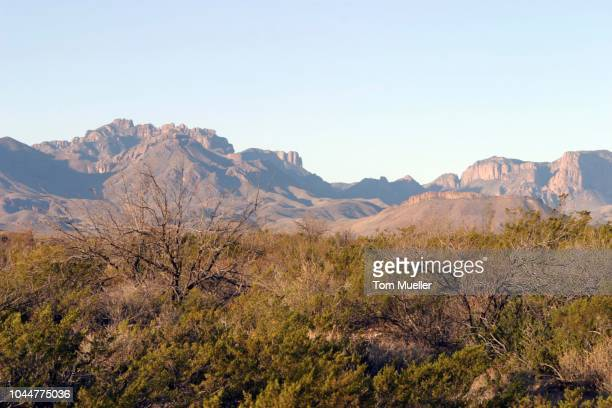 big bend national park landscape, texas, usa - big tom stock pictures, royalty-free photos & images