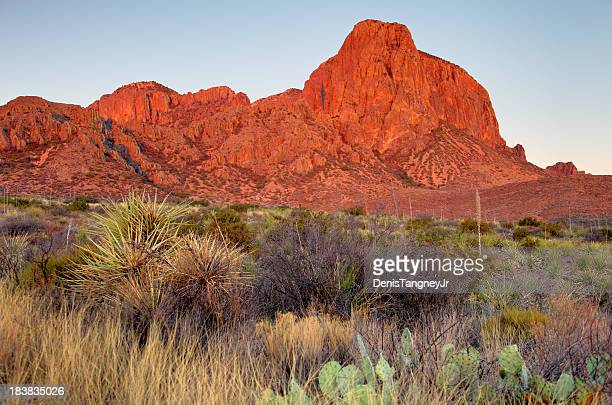 big bend - chisos mountains stock pictures, royalty-free photos & images