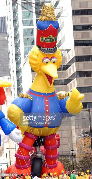 Big Bird balloon is pulled along the Benjamin Franklin Parkway during the 6ABC/IKEA Thanksgiving Day Parade November 27, 2008 in Philadelphia,...