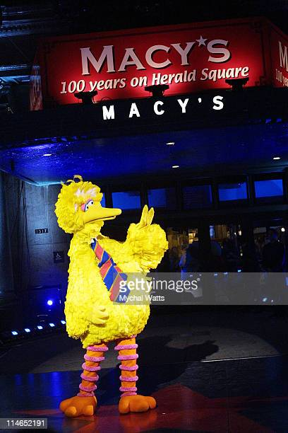 Big Bird during Macy's Celebrates 100 Years at Herald Square Location at Macy's 34 st Herald Square in New York City New York United States