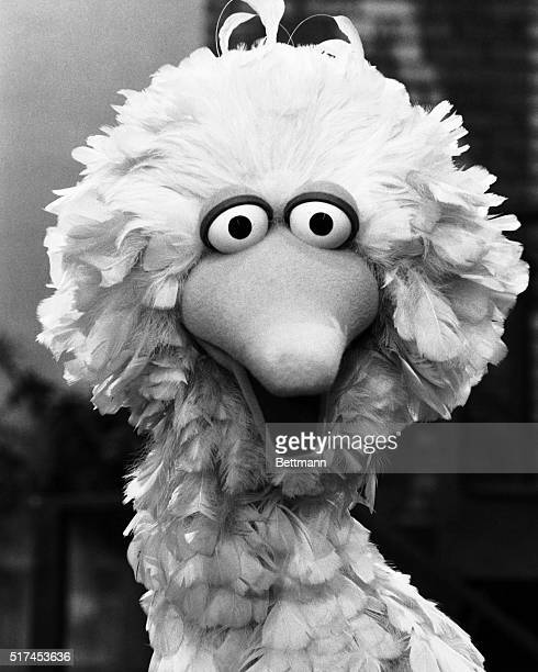 Big Bird was a character on the TV show Sesame Street circa 1969
