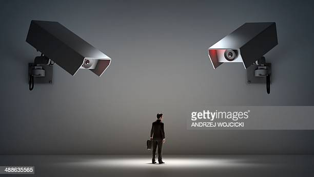 Big brother, conceptual artwork