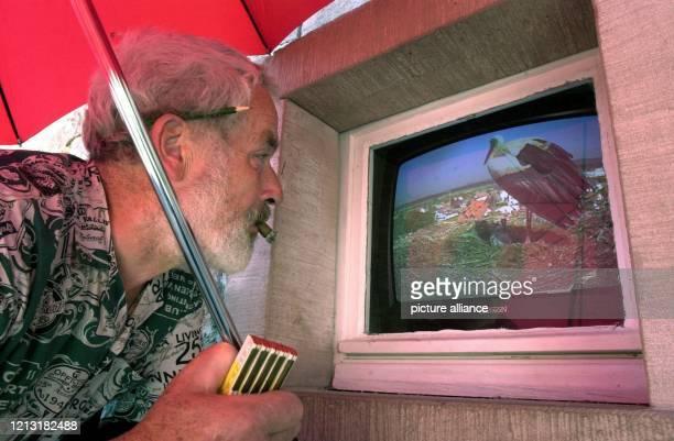 Big Brother für Störche?: Ein Handwerker beobachtet am 9.5.2000 auf einem Fernsehschirm das Storchennest auf einem Turm in Denzlingen bei Freiburg ....