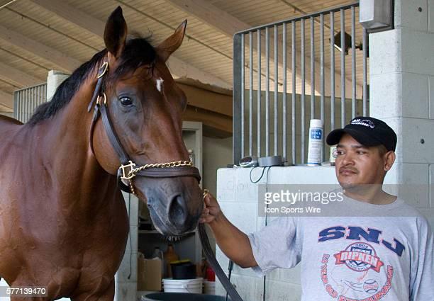 Big Brown with hot walker Alberto Montjo at Palm Meadows Training Center in Boynton Beach, Florida, USA.