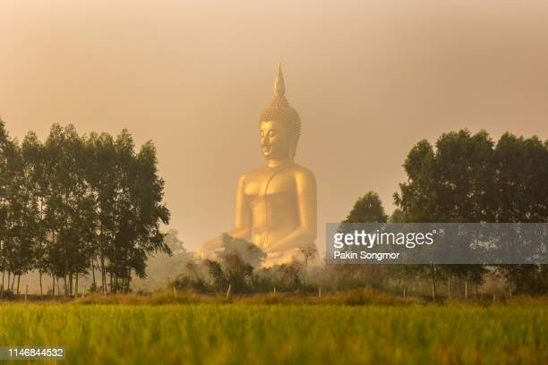 big buddha in wat muang at ang thong province popular buddhist shrine in thailand with air pollution in the area. - wat stock pictures, royalty-free photos & images