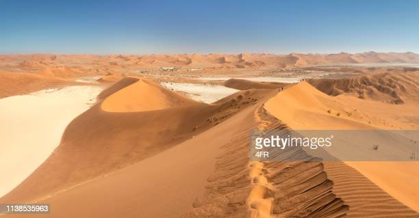 big daddy dune with dead vlei, sossusvlei, namib desert, namibia, africa - dead vlei namibia stock pictures, royalty-free photos & images