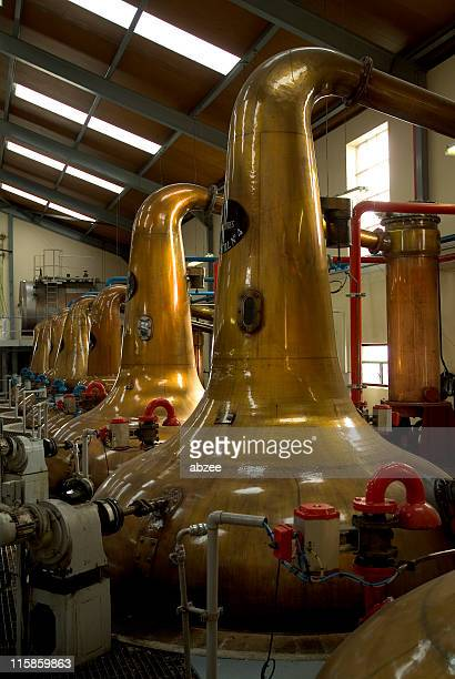 Big distillery with many stills with Scottish whisky inside