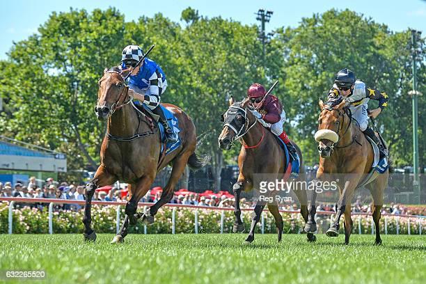 Big Duke ridden by Ben Allen wins Schweppes Sparkling Handicap at Moonee Valley Racecourse on January 21 2017 in Moonee Ponds Australia