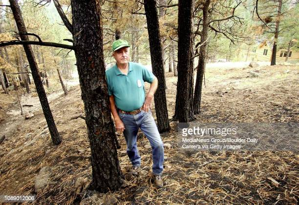 Big Elk Meadows volunteer fire chief Jerry Guthrie stands amid pines that were torched close homes in a Big Elk Meadows neighborhood Thursday.