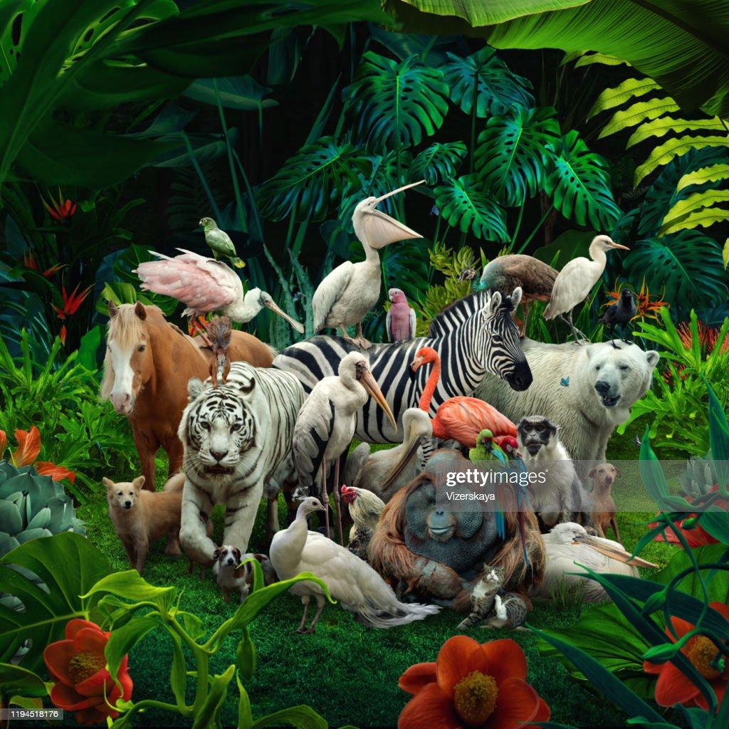 Grande famiglia nella foresta : Foto stock