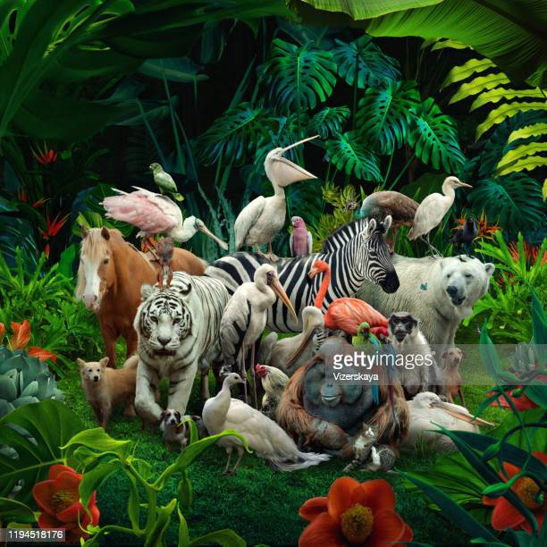 big family in the forest - domestic animals stock pictures, royalty-free photos & images