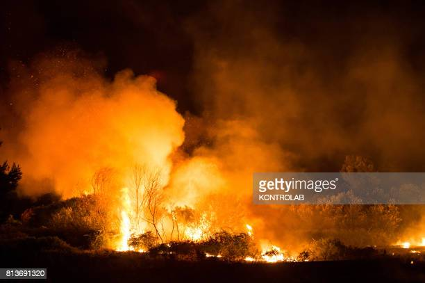 Big fire during one of the fires that struck Cosentino in Calabria throughout the day and night destroying thousands of hectares of woods at the foot...