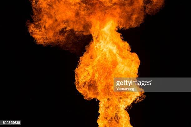 Big fire on black background
