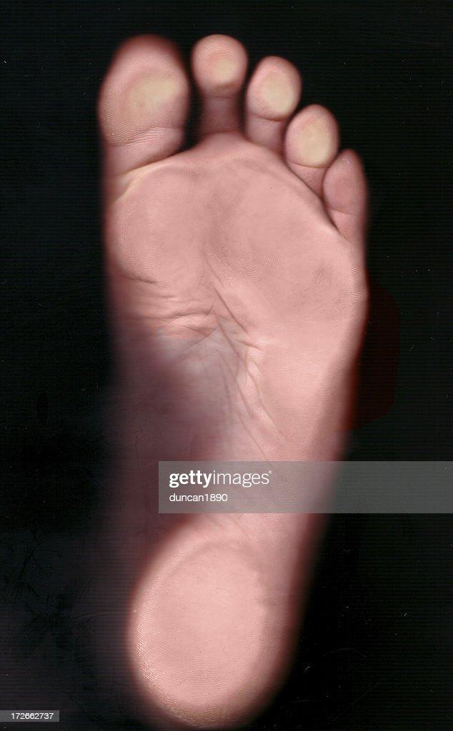 Big Foot : Stock Photo