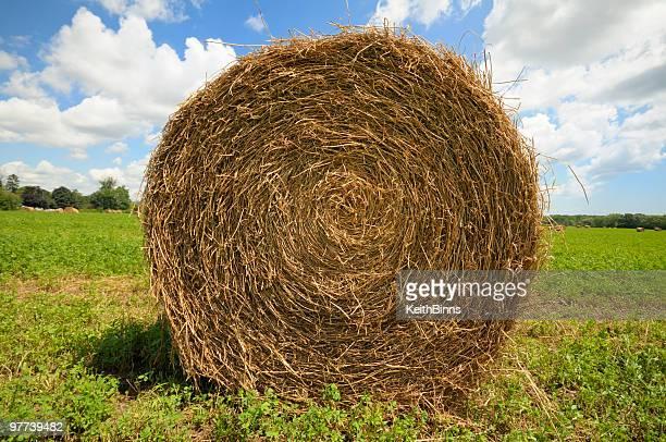 A big hay bale on a farm on a sunny day