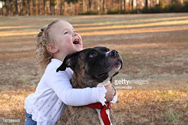 big hug - pit bull terrier stock photos and pictures