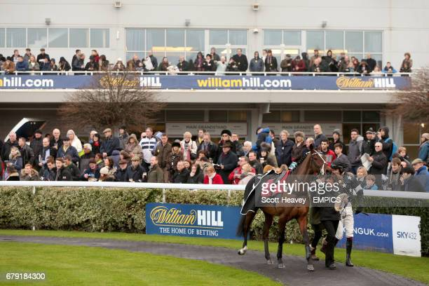 Big John Cannon and jockey Aidan Coleman in the parade ring before the William Hill iPhone iPad iPad Mini Juvenile Hurdle during day two of the 2013...