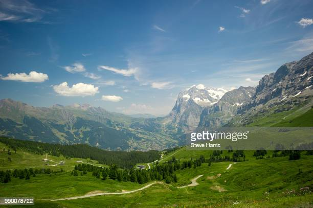big mountains, meadows and sky - big meadows stock pictures, royalty-free photos & images