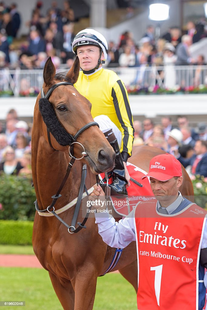 Emirates Melbourne Cup - All Runners : News Photo