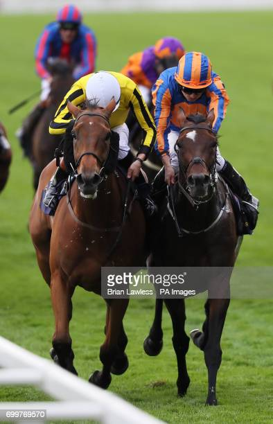 Big Orange ridden by jockey James Doyle battles with Order Of St George ridden by Ryan Moore on the way to winning the Gold Cup during day three of...