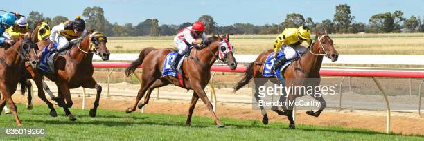 Big Spender ridden by Linda Meech wins Echuca Newsagency BM58 Handicap at Echuca Racecourse on February 13 2017 in Echuca Australia