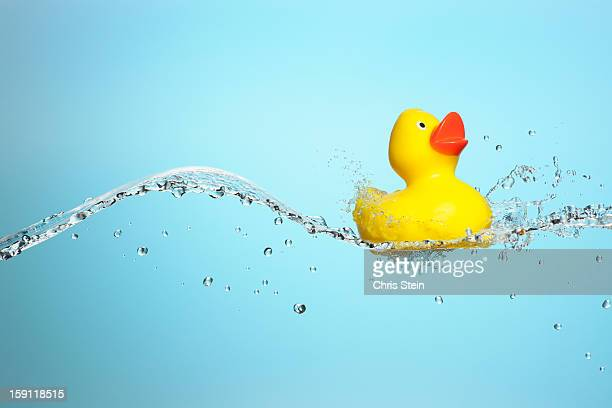 Big Splash Rubber Duckie
