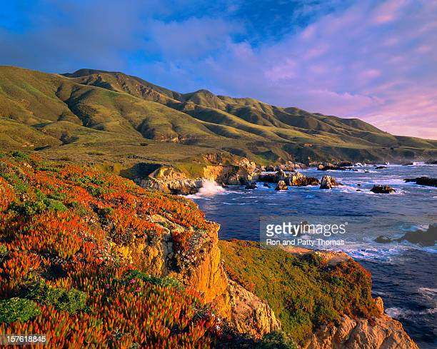 big sur coast of california - monterrey stock pictures, royalty-free photos & images