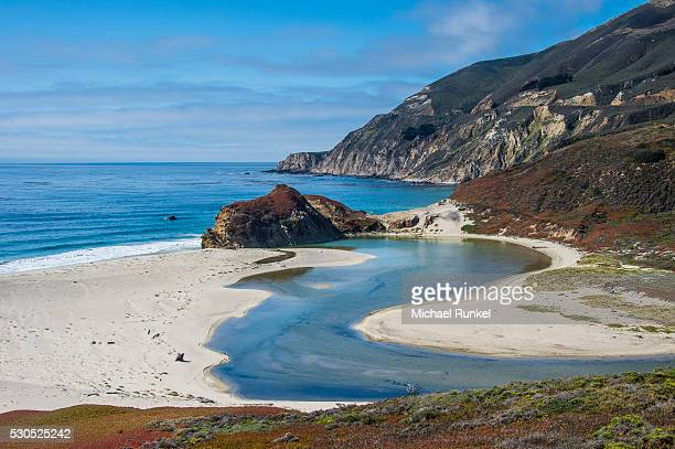 big sur river flowing out into the pacific ocean at andrew molera state park south of monterey, ca, big sur, california, usa - state park stock pictures, royalty-free photos & images