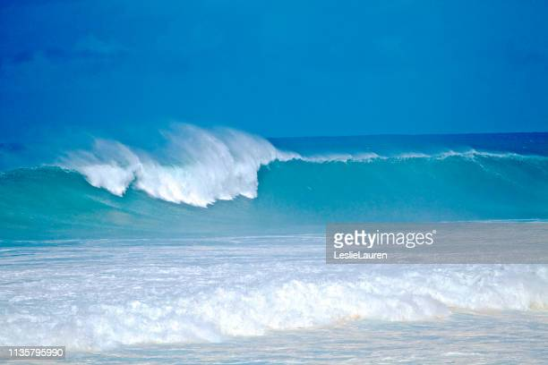 big surf - lauren summers stock photos and pictures