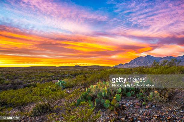 big texas dawn in big bend national park - chisos mountains stock pictures, royalty-free photos & images