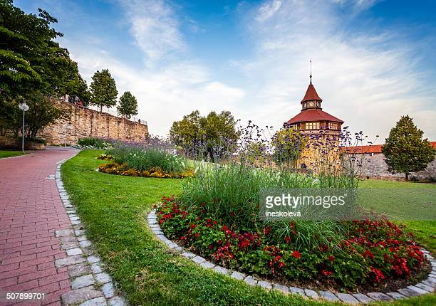 big tower behind the flowers. - stuttgart stock pictures, royalty-free photos & images