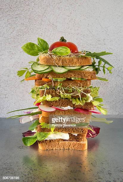 big vegetarian toast