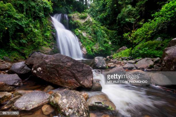 big waterfall in the rainforest. - hawaiian waterfalls stock pictures, royalty-free photos & images