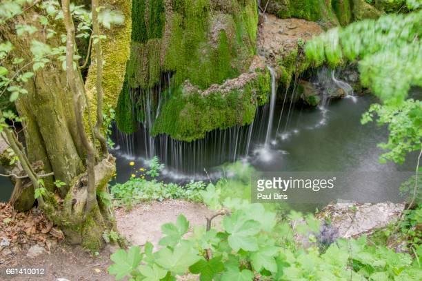 bigar waterfall, cheile nerei national park, romania - national landmark stock pictures, royalty-free photos & images