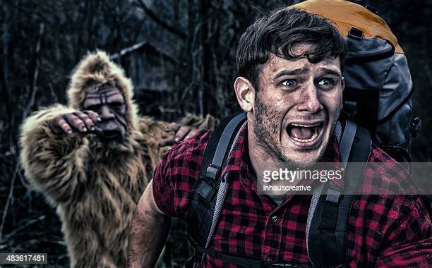 Bigfoot chasing a camper thru the woods