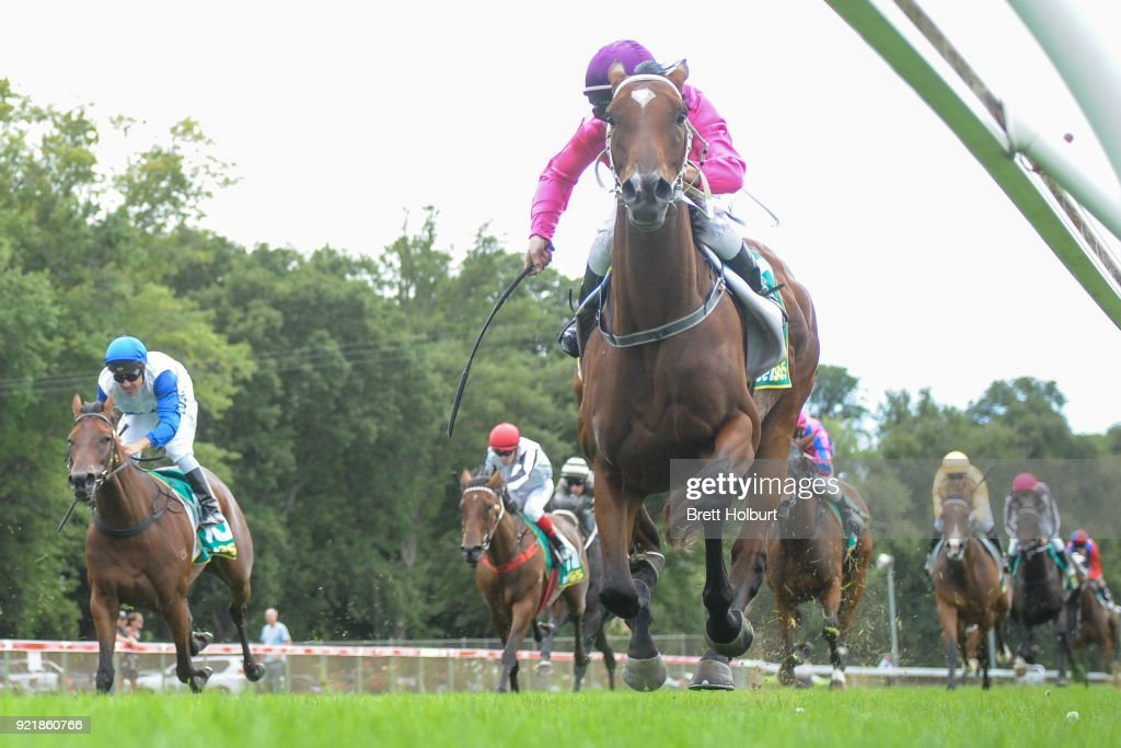Members Day Raceday April 6 Maiden Plate : News Photo