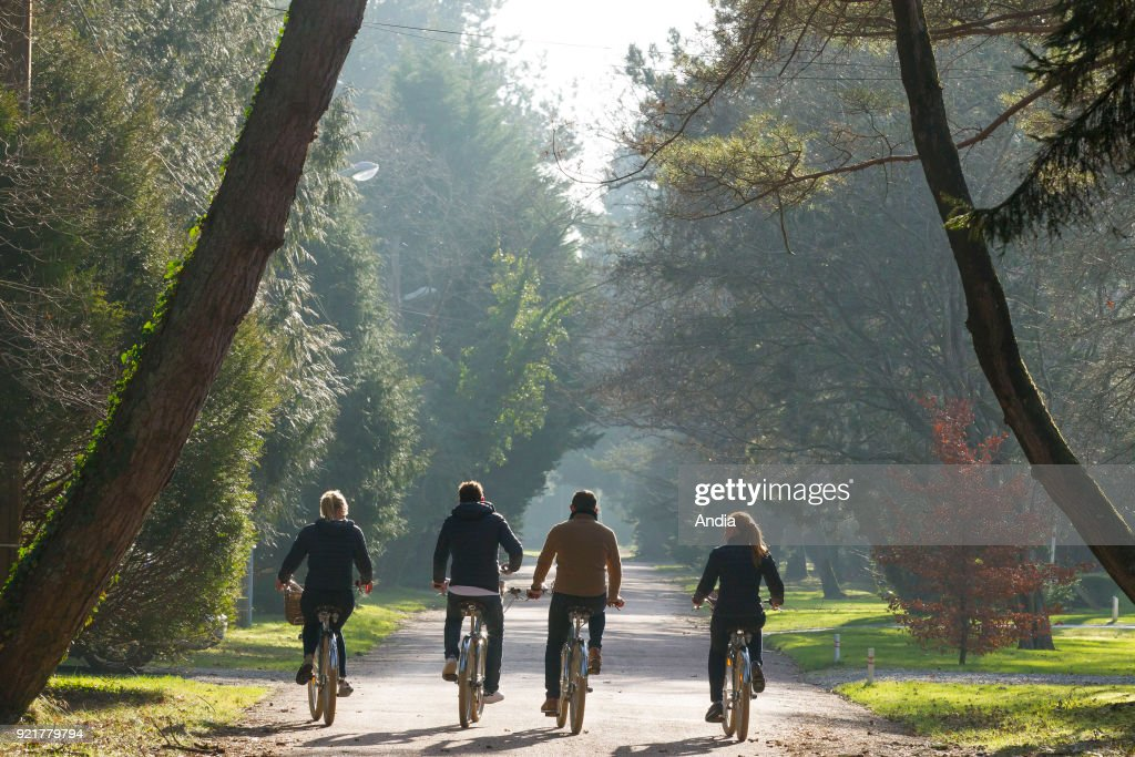 Bike ride in Le Touquet (northern France). Two couples riding bikes on a cycle lane in Le Touquet.